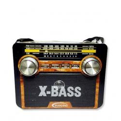 Radio AM/FM YG-033. I.393
