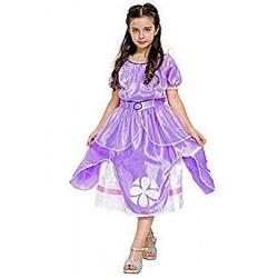 Disfraz Princesa Elena I.593