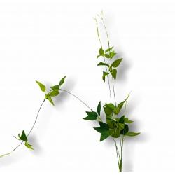 Planta 82cm I.922