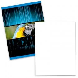 Cuaderno Auguri/ Flex Liso 96 h.