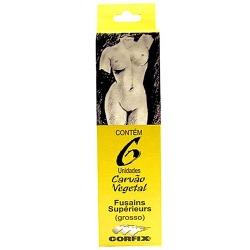 Carbonilla Vegetal Fina